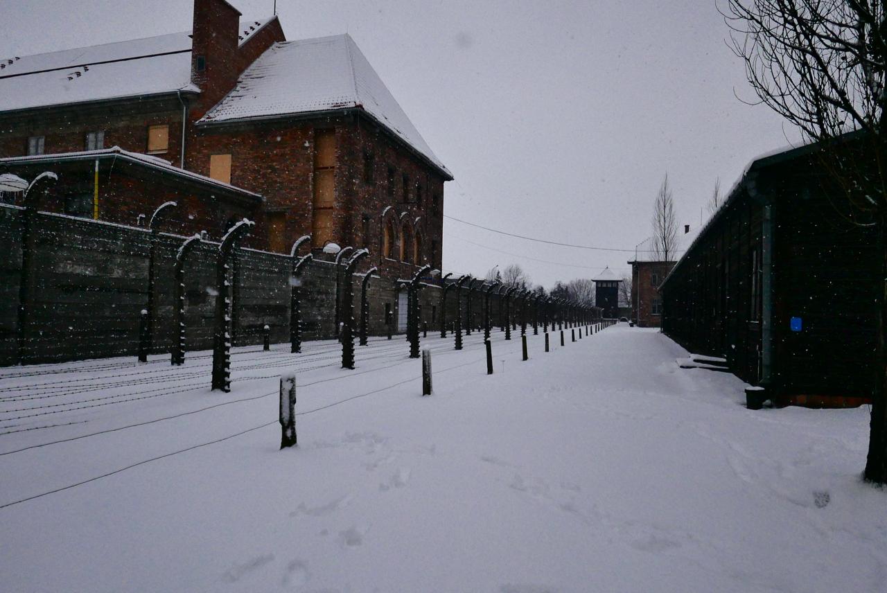 丟掉手機去旅行Day5波蘭|奧斯威辛集中營&克拉科夫住宿推薦